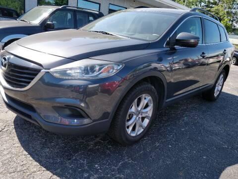 2014 Mazda CX-9 for sale at The Car Cove, LLC in Muncie IN