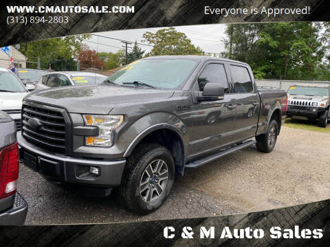 2015 Ford F-150 for sale at C & M Auto Sales in Detroit MI
