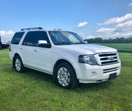 2013 Ford Expedition for sale at Motorsota in Becker MN