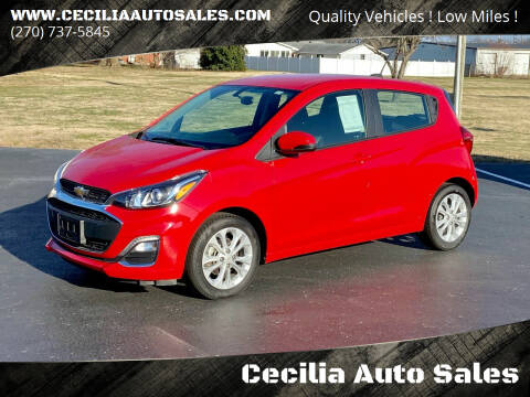 2019 Chevrolet Spark for sale at Cecilia Auto Sales in Elizabethtown KY