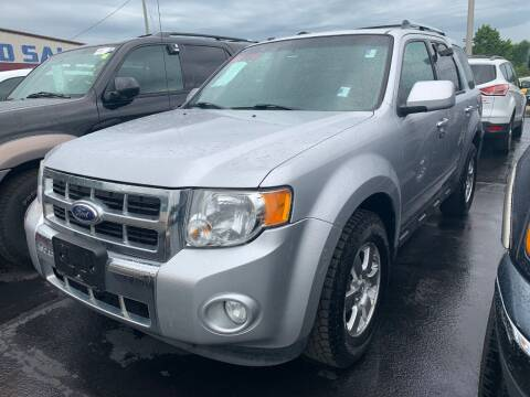 2012 Ford Escape for sale at American Motors Inc. - Cahokia in Cahokia IL