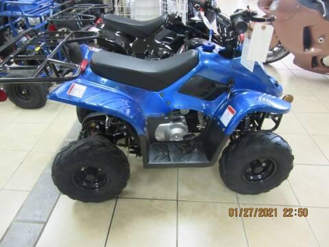 2021 TAO TAO 110 BOLDER for sale at Trinity Cycles in Burlington NC