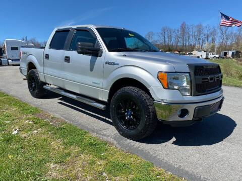 2014 Ford F-150 for sale at Variety Auto Sales in Abingdon VA