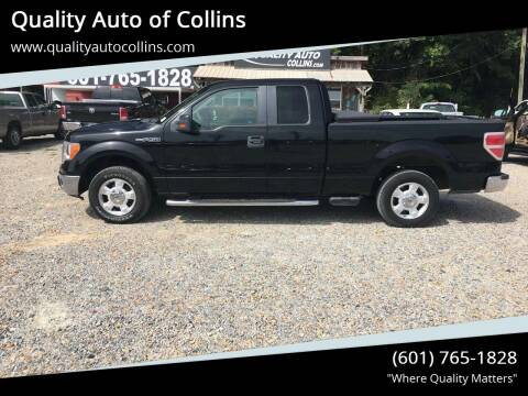 2009 Ford F-150 for sale at Quality Auto of Collins in Collins MS