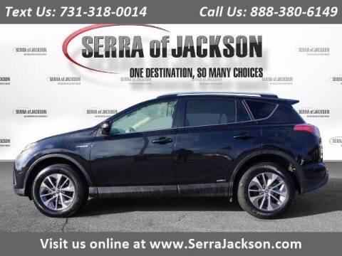 2016 Toyota RAV4 Hybrid for sale at Serra Of Jackson in Jackson TN