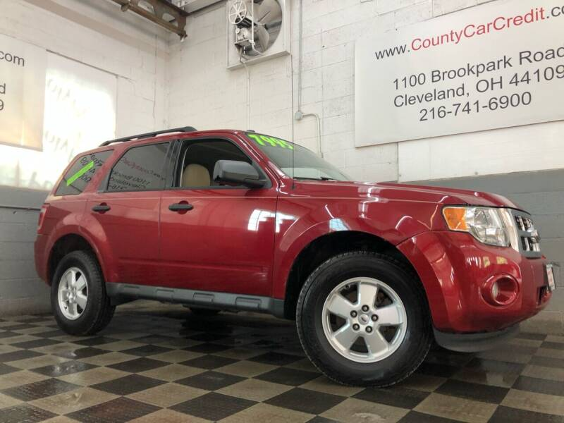 2011 Ford Escape for sale at County Car Credit in Cleveland OH