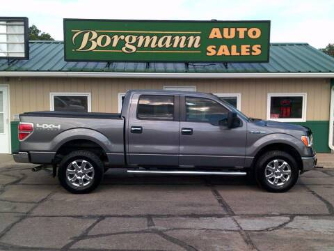 2014 Ford F-150 for sale at Borgmann Auto Sales in Norfolk NE