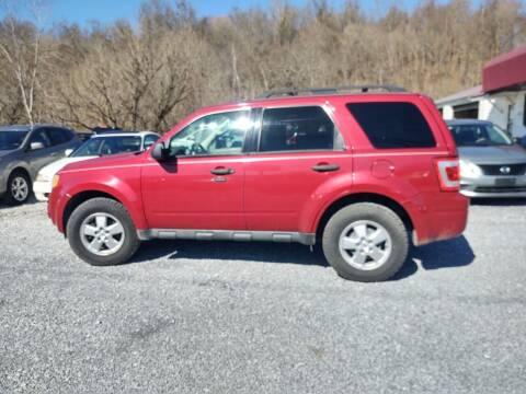 2010 Ford Escape for sale at Magic Ride Auto Sales in Elizabethton TN