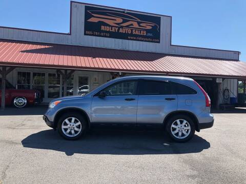2007 Honda CR-V for sale at Ridley Auto Sales, Inc. in White Pine TN