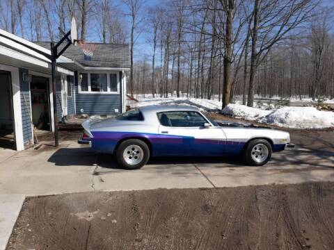 1976 Chevrolet Camaro for sale at Classic Car Deals in Cadillac MI