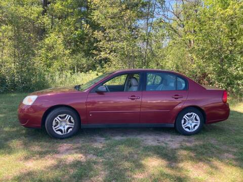 2006 Chevrolet Malibu for sale at Expressway Auto Auction in Howard City MI