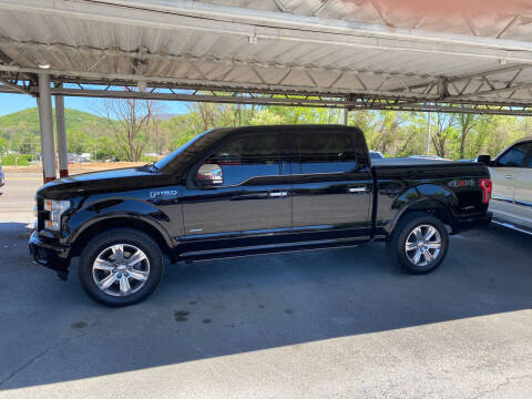 2016 Ford F-150 for sale at Lewis Used Cars in Elizabethton TN
