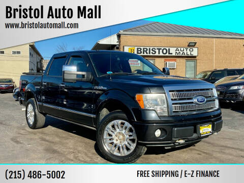 2010 Ford F-150 for sale at Bristol Auto Mall in Levittown PA