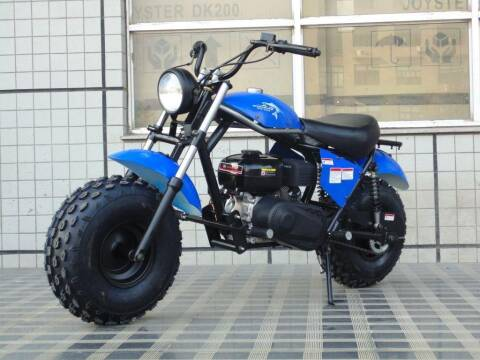 2021 TRAILMASTER MINI BIKE for sale at VICTORY AUTO in Lewistown PA
