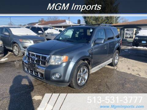 2010 Ford Escape for sale at MGM Imports in Cincannati OH