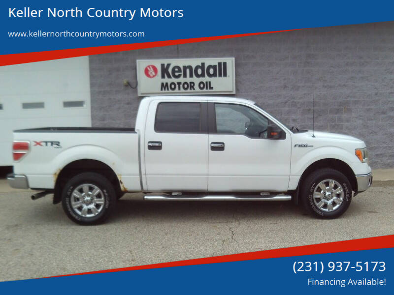 2010 Ford F-150 for sale at Keller North Country Motors in Howard City MI