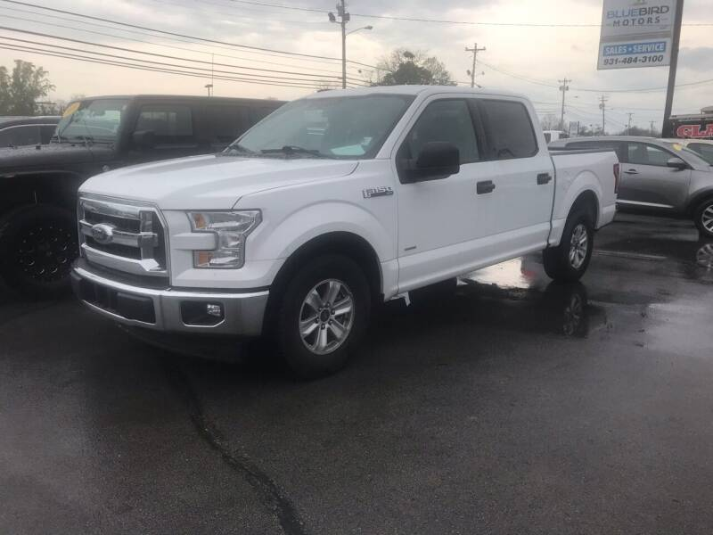 2017 Ford F-150 for sale at Blue Bird Motors in Crossville TN