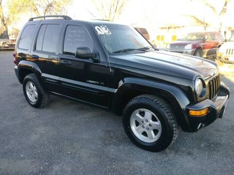 2003 Jeep Liberty for sale at ALEMAN AUTO INC in Norfolk NE