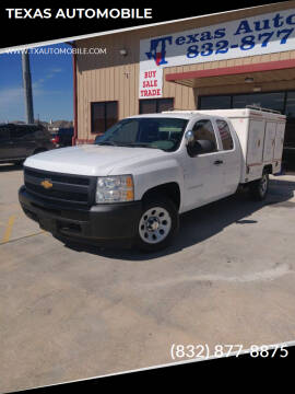 2010 Chevrolet Silverado 1500 for sale at TEXAS AUTOMOBILE in Houston TX