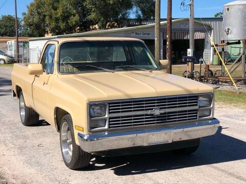 1983 Chevrolet C/K 10 Series for sale at OVE Car Trader Corp in Tampa FL