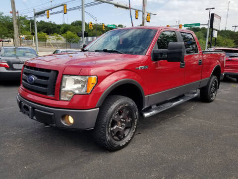 2009 Ford F-150 for sale at Cedar Auto Group LLC in Akron OH
