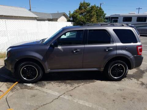 2011 Ford Escape for sale at Freds Auto Sales LLC in Carson City NV