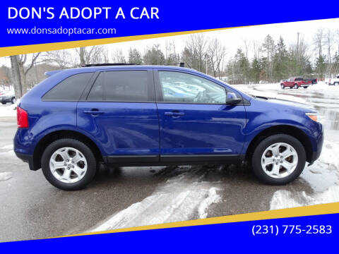 2013 Ford Edge for sale at DON'S ADOPT A CAR in Cadillac MI