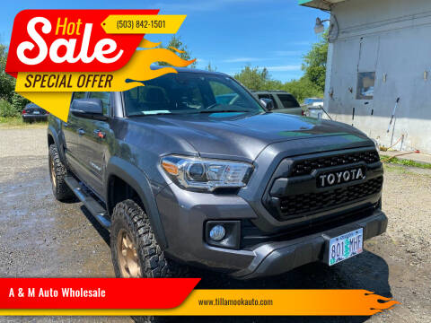 2019 Toyota Tacoma for sale at A & M Auto Wholesale in Tillamook OR