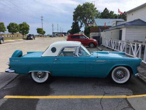 1956 Ford Thunderbird for sale at CARuso Classic Cars in Tampa FL
