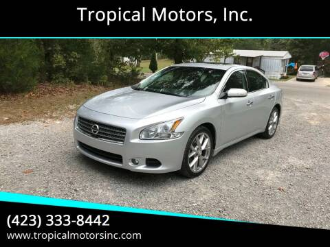 2010 Nissan Maxima for sale at Tropical Motors, Inc. in Riceville TN