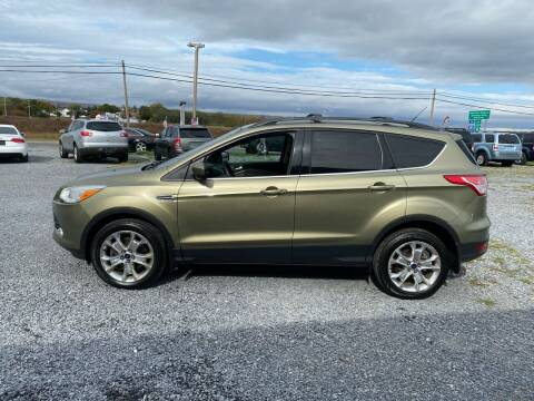2013 Ford Escape for sale at Tri-Star Motors Inc in Martinsburg WV