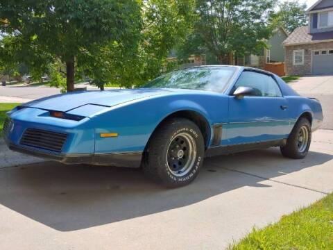 1982 Pontiac Firebird for sale at Classic Car Deals in Cadillac MI