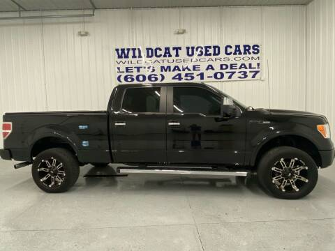 2012 Ford F-150 for sale at Wildcat Used Cars in Somerset KY