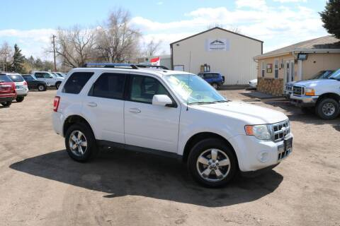 2009 Ford Escape for sale at Northern Colorado auto sales Inc in Fort Collins CO