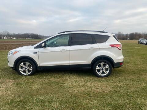 2014 Ford Escape for sale at Wendell Greene Motors Inc in Hamilton OH