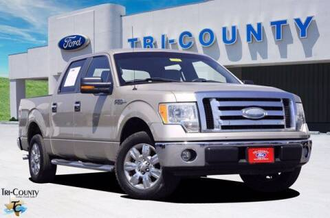 2009 Ford F-150 for sale at TRI-COUNTY FORD in Mabank TX