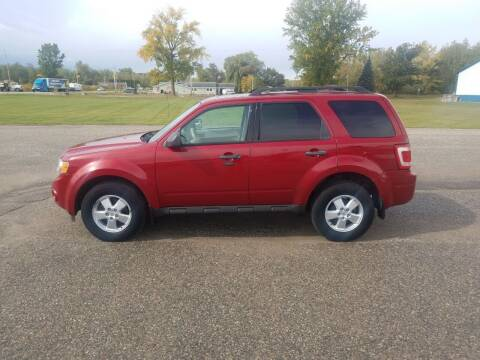 2010 Ford Escape for sale at Steve Winnie Auto Sales in Edmore MI
