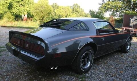 1980 Pontiac Firebird for sale at Classic Car Deals in Cadillac MI