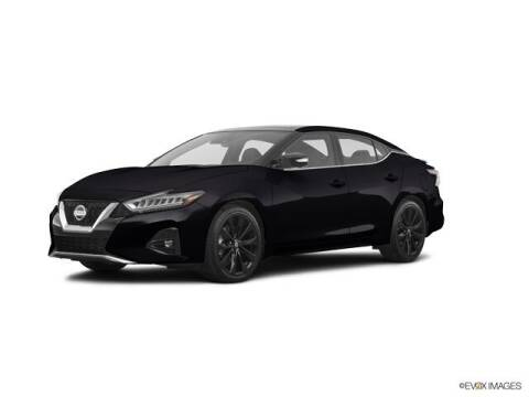2019 Nissan Maxima for sale at Douglass Automotive Group in Central Texas TX