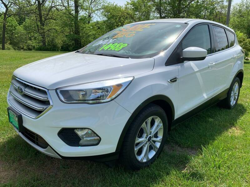 2017 Ford Escape for sale at FREDDY'S BIG LOT in Delaware OH