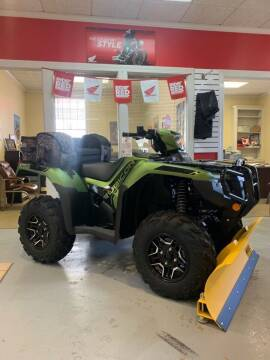 2020 Honda Rubicon Deluxe 520 for sale at Dan Powers Honda Motorsports in Elizabethtown KY