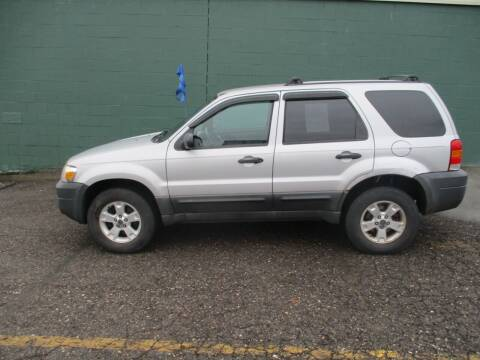 2005 Ford Escape for sale at Sally & Assoc. Auto Sales Inc. in Alliance OH