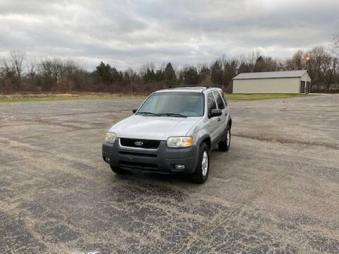 2002 Ford Escape for sale at Caruzin Motors in Flint MI
