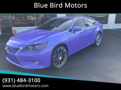 2013 Lexus ES 350 for sale at Blue Bird Motors in Crossville TN