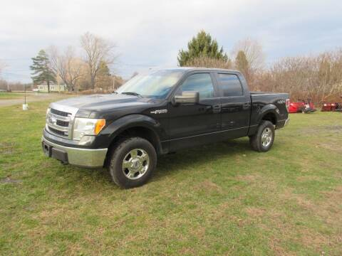 2013 Ford F-150 for sale at Clearwater Motor Car in Jamestown NY
