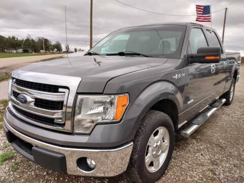 2013 Ford F-150 for sale at Drive in Leachville AR