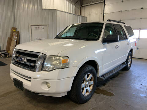 2010 Ford Expedition for sale at Blake Hollenbeck Auto Sales in Greenville MI