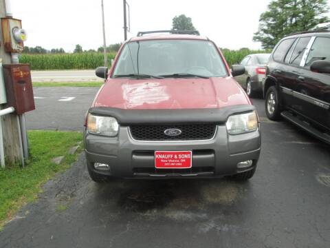 2003 Ford Escape for sale at Knauff & Sons Motor Sales in New Vienna OH