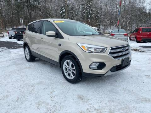 2017 Ford Escape for sale at Pine Grove Auto Sales LLC in Russell PA