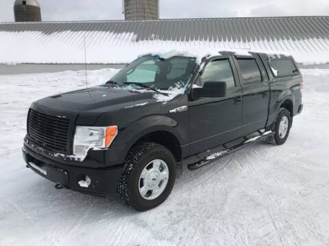 2013 Ford F-150 for sale at Forkey Auto & Trailer Sales in La Fargeville NY